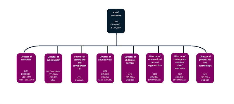 Diagram of Blackpool Council chief officer and department structure.